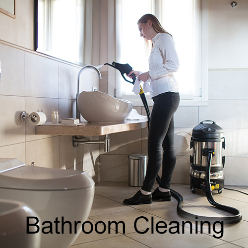Bathroom Cleaning