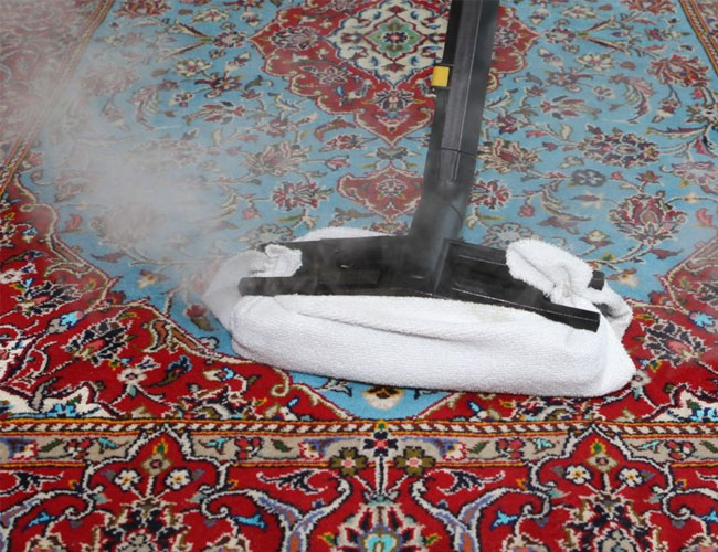 equipment suited to cleaning carpets