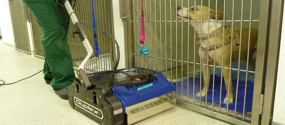 sanitizing and contaminant removal from animal care facilities