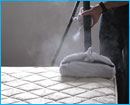 remove bed bugs, sanitize mattresses- work for yourself and start a cleaning business specialising in bedding