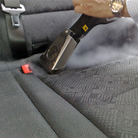 cleaning vehicles- exterior painted surfaces and interior upholstery and floors