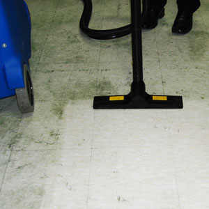 dissolve grease from kitchen floors, and remove dirt films from tiles and contoured safety flooring