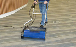 Carpet Cleaner Cleaning Solutions