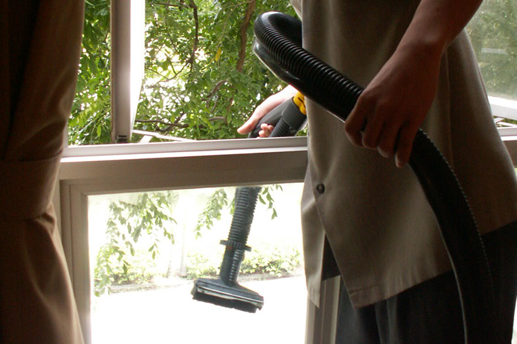 Window and furniture cleaning