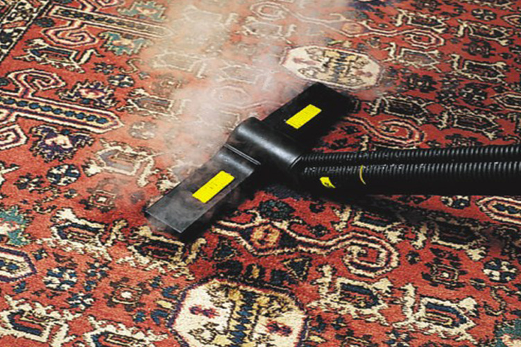 Cleaning carpets and spills